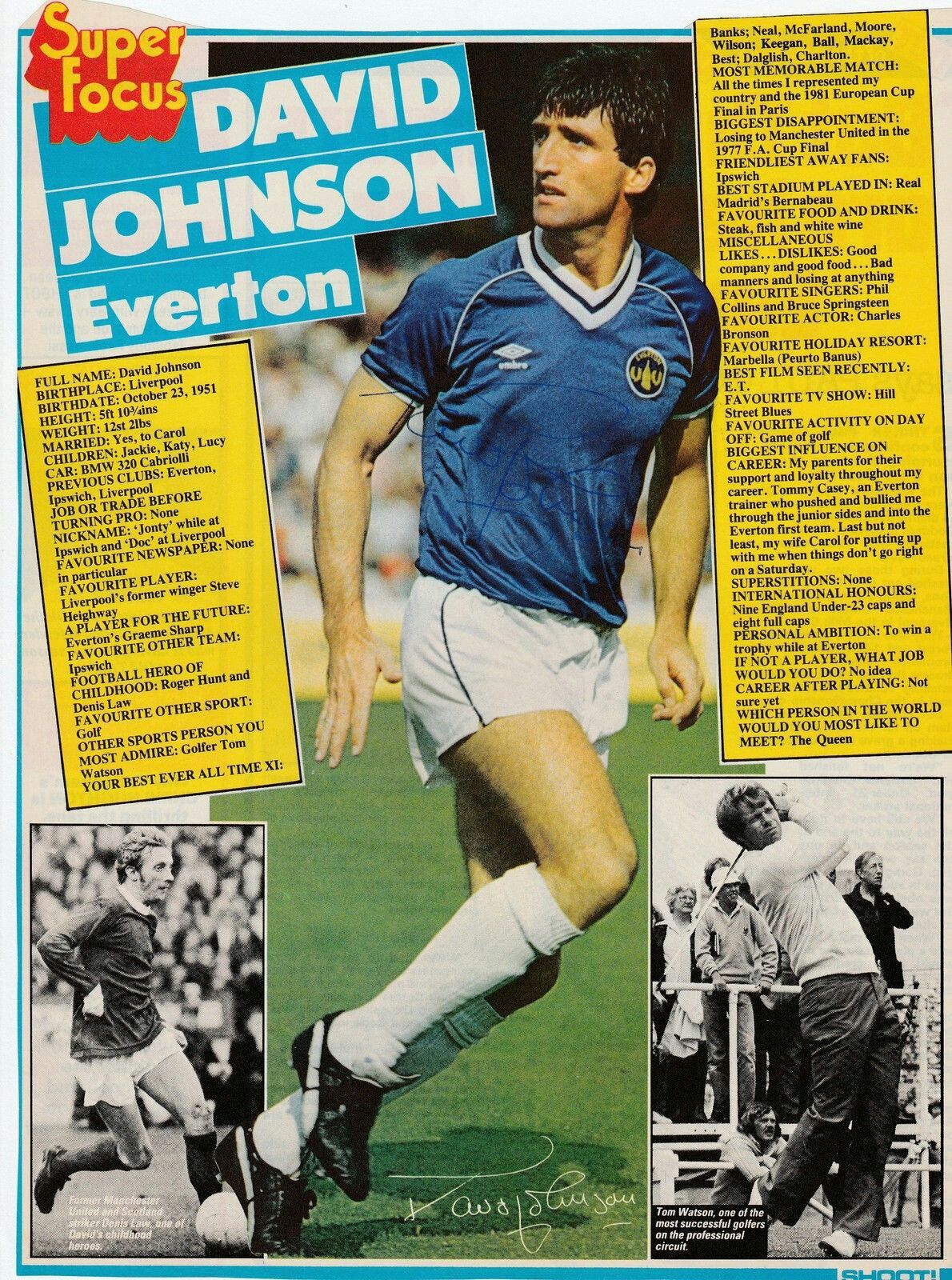 Focus on Everton's David Johnson