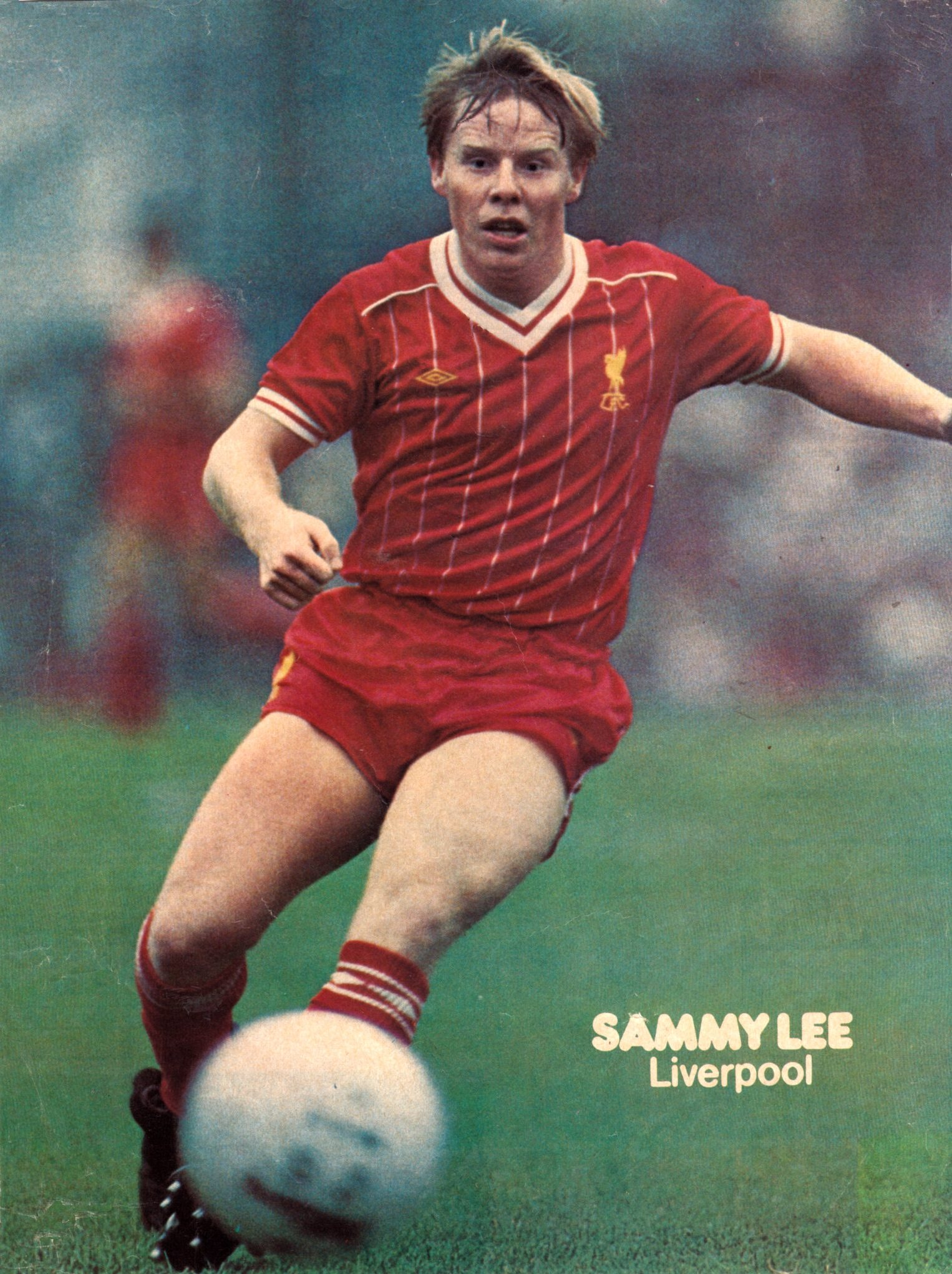 Poster of Sammy Lee - 1983